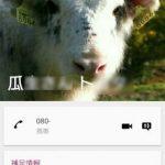 電話帳に新規連絡先を登録する方法|Xperia X Performance